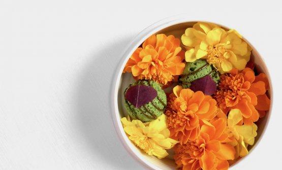 Takoyaki vegetali all'aglio orsino e pistacchio di Bronte