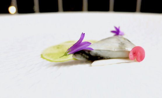 Marmoreo: fine velo di calamaro, condimenti som tam come una papaya salad