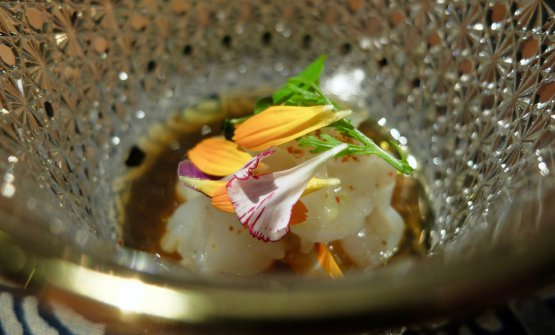 Aragosta con calamari sardi, yuzu, ponzu, olio di shiso