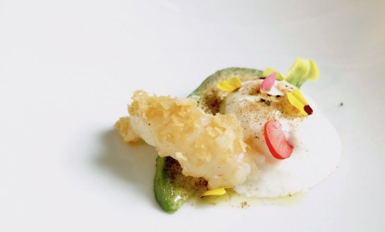Amande: roasted scampi with rhododendron honey, avocado with cinnamon, mousse of apricot kernels, powdered coffee