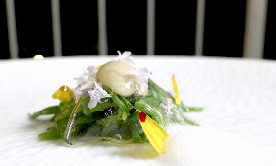 Ostrica e fagiolini in giardiniera, con velo di infusione di giardiniera