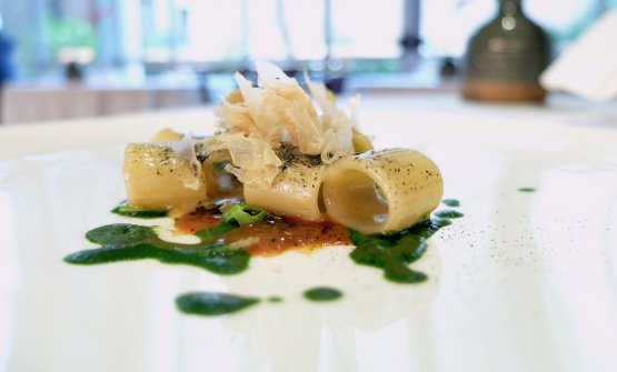 Mezzemaniche, fegati e fegato. La pasta è condita con foie gras, fegato di seppia, katsuobushi,salsa verde di foglia ostrica, riduzione di bisque, crescione