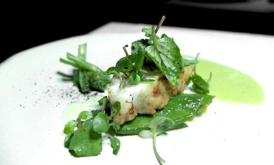 Pescatrice alla brace, taccole, crescione acquatico, salsa di aglio a foglia verde, fagiolini