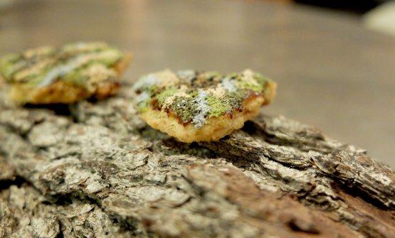 Finta corteccia di cookie con nutella d'orzo fermentato, polveri di piantaggine, fieno e porcini