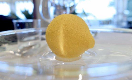 Limone del giardino, menta dell'orto. Bavarese di limone e burro di cacao aromatizzato al limone, cuore di limone, basilico e menta