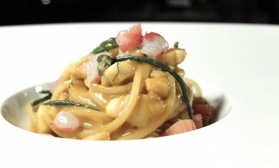 Spaghetto Gentile con granchio, scorfano e salicornia