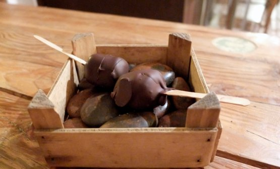 Favi di miele immersi in massa di cacao