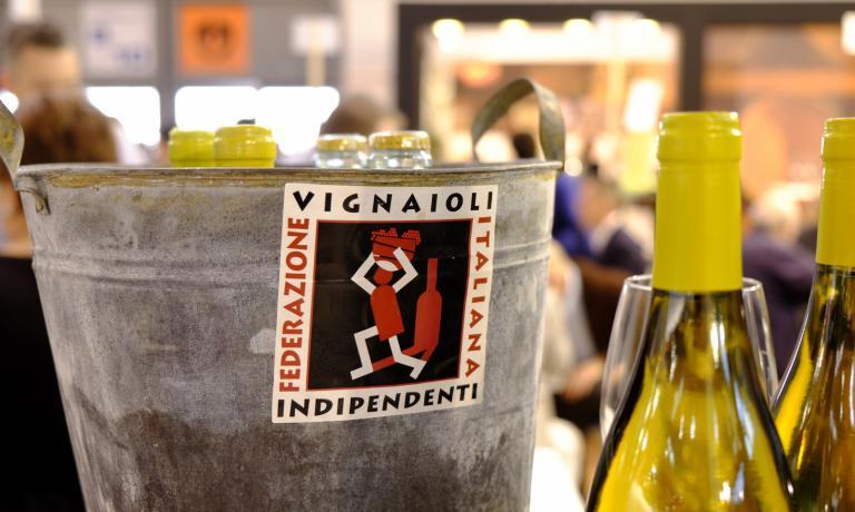 Vi raccontiamo la realtà della Fivi,Federazione italiana vignaioli indipendenti,quasi 1000 produttori associati che coprono un totale di circa 10mila ettari di vigneto. Ben 70 sono i milioni di bottiglie commercializzate e il fatturato totale supera 0,7 miliardi di euro