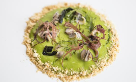 Insalatina di garusoli con spuma di prezzemolo e yuzu, alghe di mare e tarallo pugliesedi Felice Lo Basso, chef del ristorante Felix Lo Basso di Milano