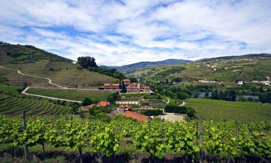 Il Six Senses Douro Valley immerso nella natura