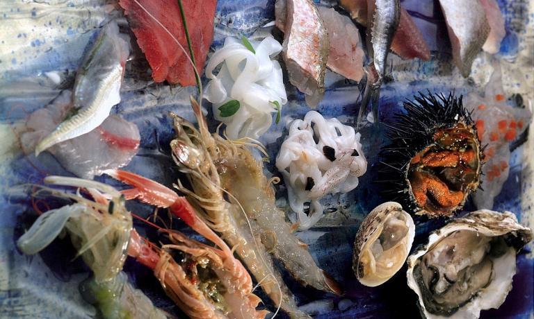 Fantasia di pesce crudo