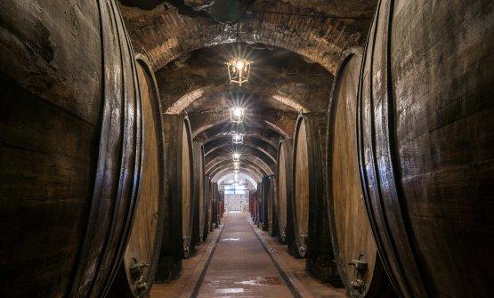 Fattoria della Talosa e le diverse anime del Vino Nobile di Montepulciano