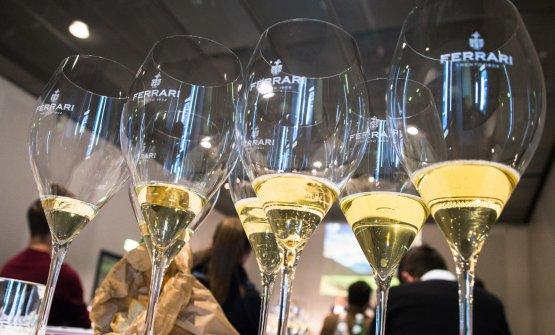 Sua Maestà lo Chardonnay, durante la splendida degustazione di Ferrari Trento