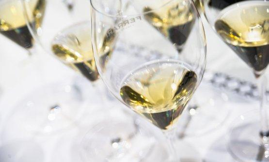 La brillantezza dello Chardonnay di montagna, secondo le interpretazioni di Ferrari
