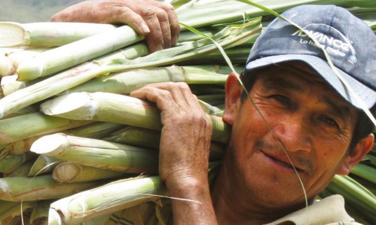 E' uno dei tanti volti degli agricoltori peruv