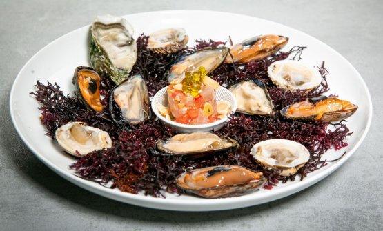 L'Adriatico in un piatto con tartare di ricciolaalla pugliese