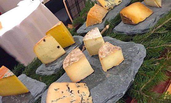 Selezione di formaggi in degustazione