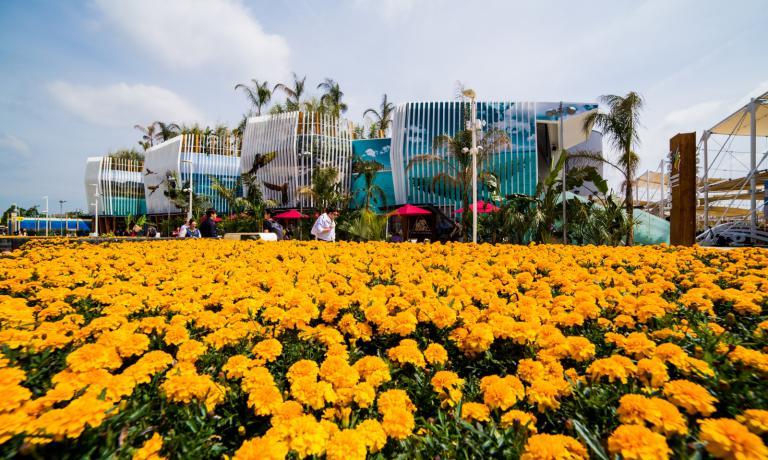 Il perimetro esterno del padiglione richiama la flora e la fauna dei diversi paesaggi colombiani