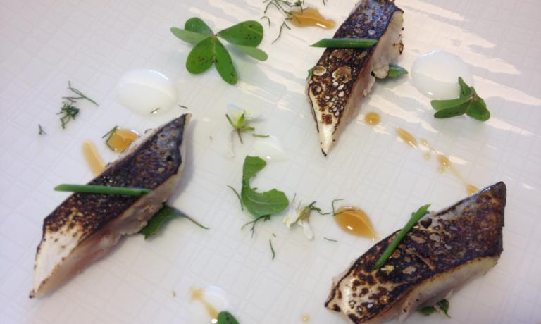 Roasted mackerel with red garlic sauce, acid emuls