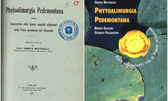 Phytoalimurgia pedemontana in edizione storica e attuale