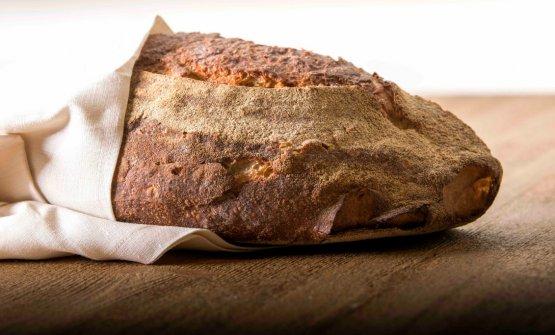 Il pane di Niko (foto di Francesco Fioramonti)