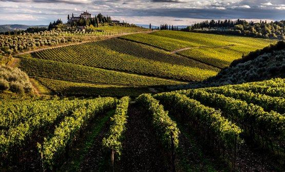 Lo splendido paesaggio della tenuta a San Donato in Perano, acquistata da Frescobaldiattraverso un'asta pubblica per 13,3 milioni di euro