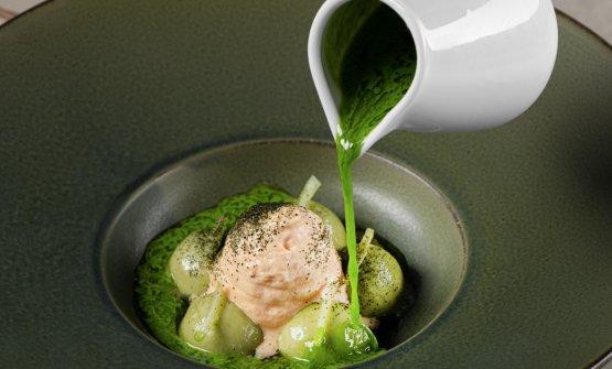 Gnocchi di fave, salsa alla lattuga e ricci di mar