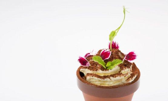 Per una volta, in un ristorante asiatico anche dessert degni di nota: questo è il Terra-Misù, ossia una mousse di mascarpone, granita di caffè al ginseng, croccante di mandorla feulletine