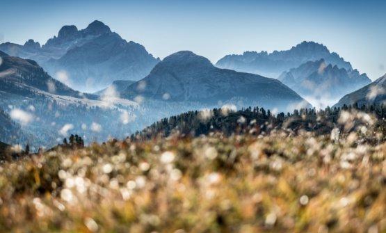 Tra le montagne dell'Alto Adige si mangia davv