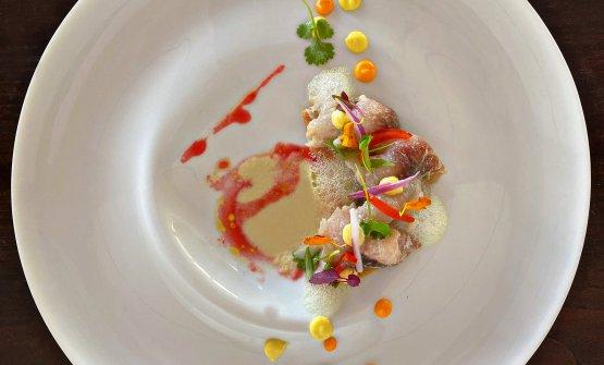 Ceviche di Cefalo su caponata napoletana: la ricetta dell'estate di Fumiko Sakai