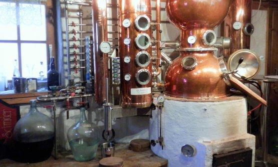 Il laboratorio della grappa a casa Schmider