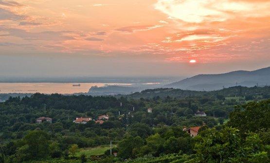 Il panorama dalla cantina Zidarich, con il Carso e il golfo di Trieste sullo sfondo