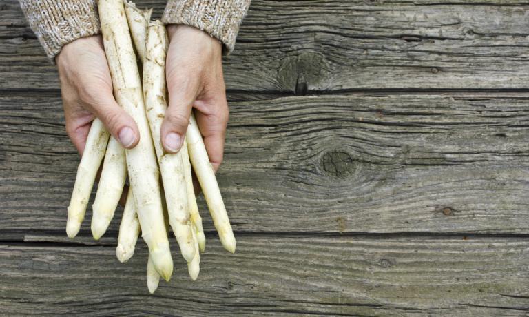 Gli asparagi di Spitsbroek (foto pzc.nl)