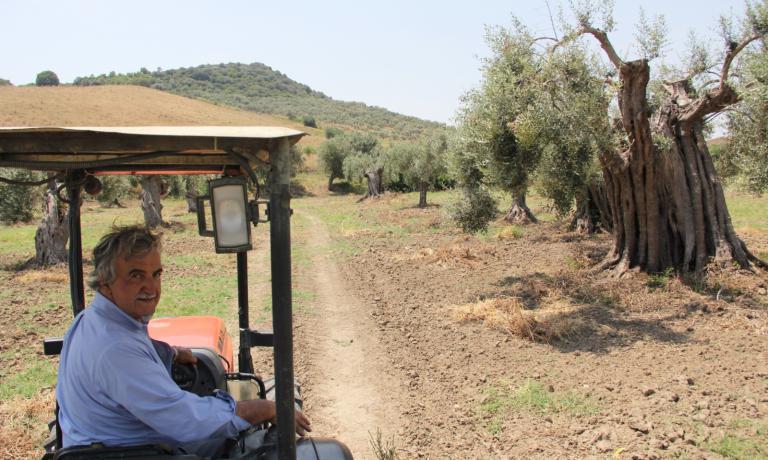 Roberto Ceraudo, agricoltore e proprietario dell&#