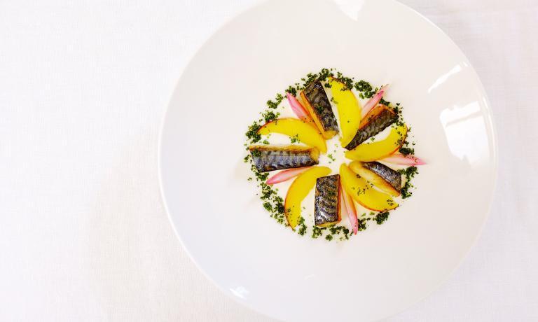 Minestra di burrata e sgombro, il piatto presentato da Fabrizio Ferrari allo scorsoWorld Oceans Day