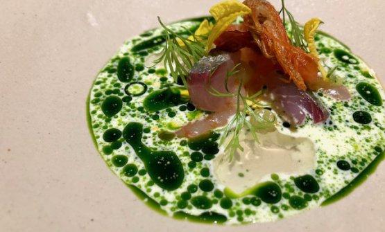 Gamba blanca: gamberi piccoli, sashimi di sgombro, pomodoro in gel econfit, salsa con olio al finocchietto e creme fraiche