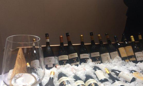 Alcuni dei vini in degustazione