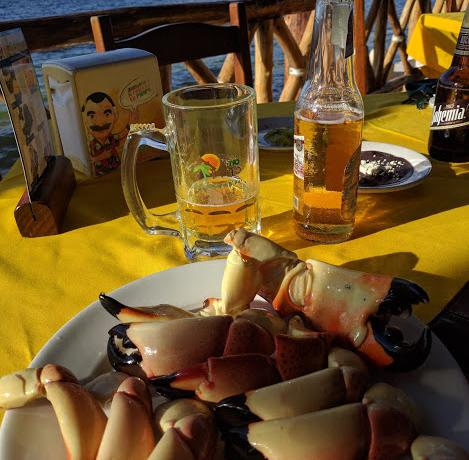 Crab claws overlooking the sea