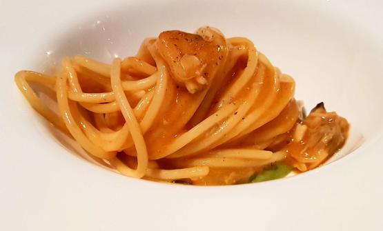 """Spaghetto """"gentile"""" cotto nel brodo di aragosta, mantecato nel sautèdi vongole, broccoletti """"sparacieddu"""" e aragosta cruda"""