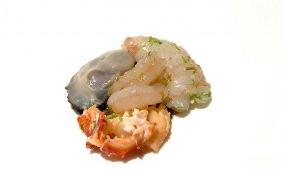 Zuppa di pesce. Quasi comfort food, dopo le montagne russe precedenti. La base è costituita da ostrica, scampo, astice e gamberidi nassa, crudi...