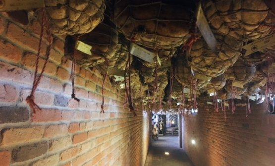 Le stanze dei culatelli (e non solo)