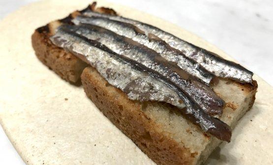 Crostone con alici (damagghia, Presidio Slow Food)