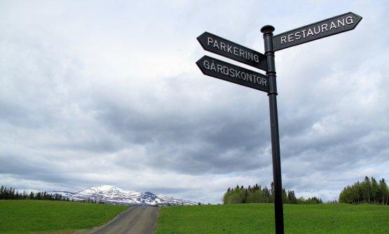 Verso il Fäviken(fotofoodsnobblog)