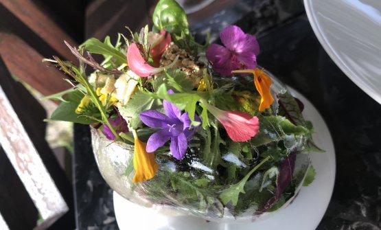 ...base di Effetto Serra, insalata di erbe e fiori, racchiusa in un cerchio di isomalto solido