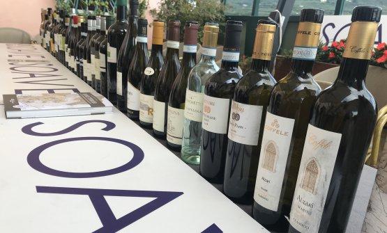 I vini di Soave Seven rappresentano la produzione di 22 aziende