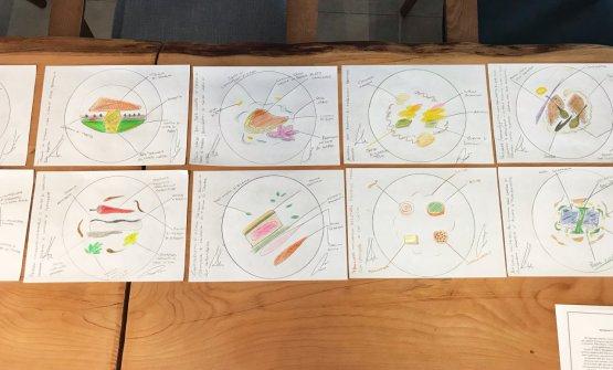 I disegni dei piatti