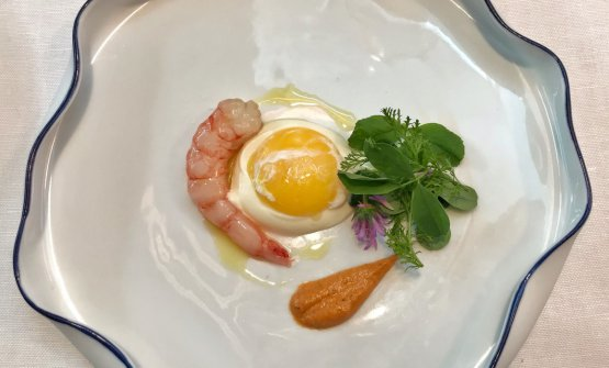 Gamberi viola di Sanremo, uovo morbido di fattoria, misticanza di prato e profumi mediterranei: di grande freschezza e di golosità suprema