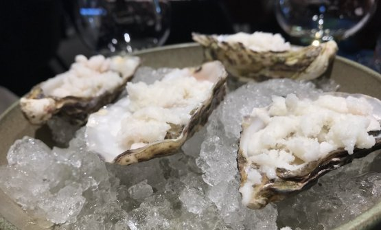 Oyster in Trentino