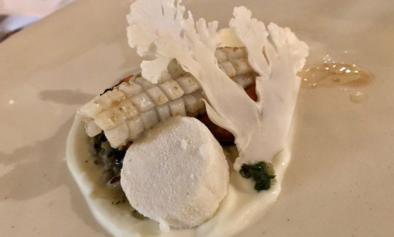 Cuttlefish, cauliflower and salicornia