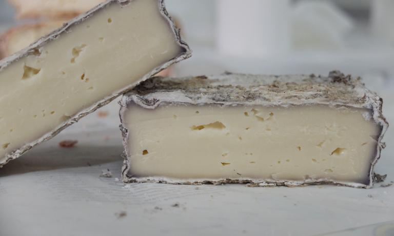 Profumi del territorio: il formaggio di bufala avvinato con il Casavecchia